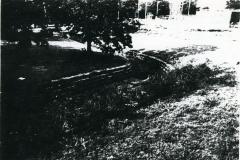 p_c_image (7)
